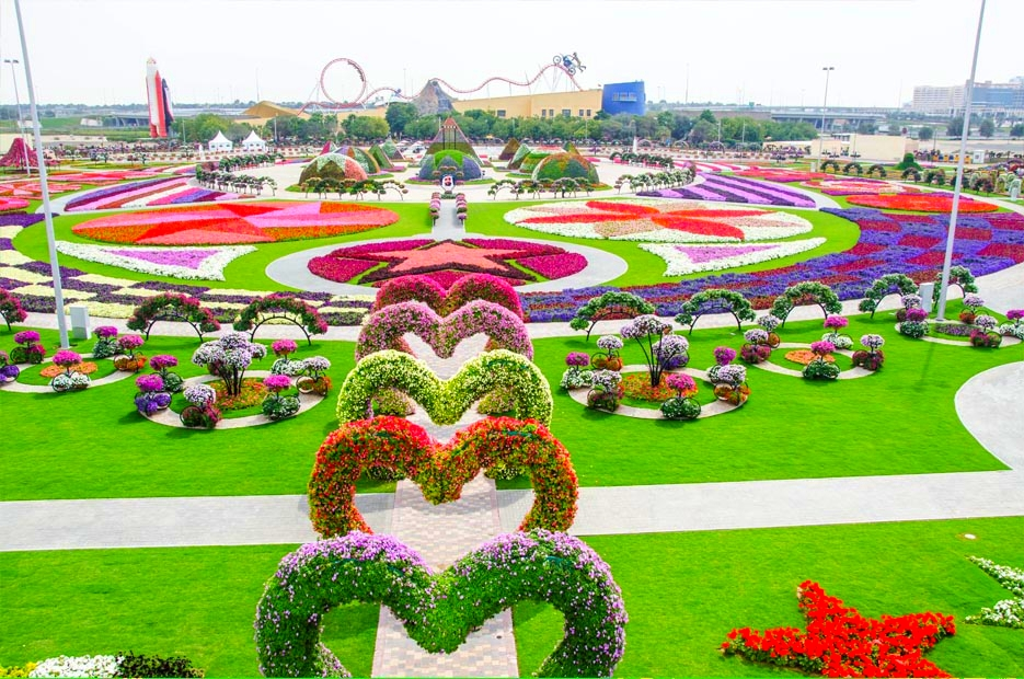 ... Dubai Miracle Garden Part 42